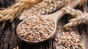 Dejar de comer trigo, ¿es buena opción?